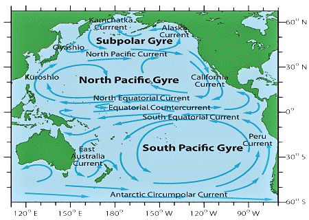 ../images/pacific_gyres